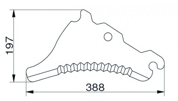 CC45488.jpg